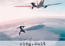 wing-suit_klein